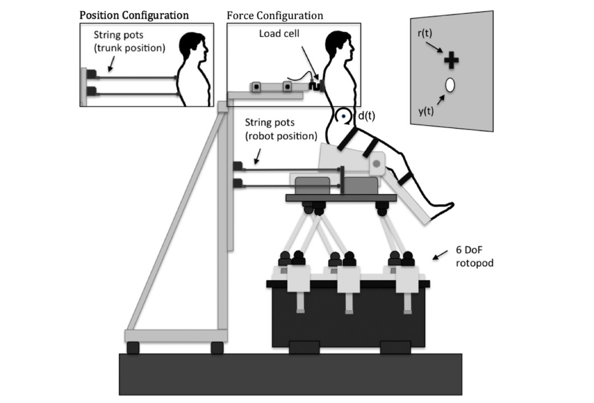 Modeling, assessment, and rehabilitation of human motor control systems